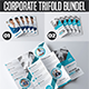 Corporate Trifold A4 Brochure Bundle - GraphicRiver Item for Sale