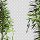 Bamboo Leaf Vertical Border Frame - VideoHive Item for Sale