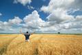 Man in yellow wheat meadow. - PhotoDune Item for Sale