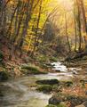Autumn nature landscape - PhotoDune Item for Sale