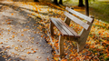 autumn golden leaves and empty park bench - PhotoDune Item for Sale
