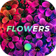 Flowers Backgrounds - GraphicRiver Item for Sale