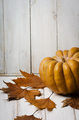 Pumpkin and maple leaves - PhotoDune Item for Sale