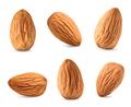 almond set - PhotoDune Item for Sale