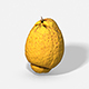 Fruit Citron - Photoscanned PBR - 3DOcean Item for Sale