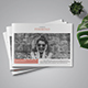 Multipurpose Clean Indesign Brochure Template - GraphicRiver Item for Sale