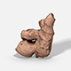 Ginger Root - Photoscanned PBR - 3DOcean Item for Sale