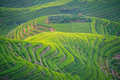 View of the cascading Longji Rice Terraces - PhotoDune Item for Sale