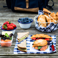 Picnic setting with different sandwiches and berries - PhotoDune Item for Sale