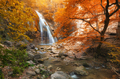 Autumn waterfall and rill flow. - PhotoDune Item for Sale