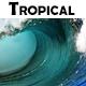 Tropical Latin