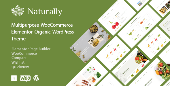 Organic Food & Grocery Market Elementor WooCommerce Theme - Naturally