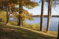Trees in autumn color on shore of beautiful lake in northern Minnesota on sunny afternoon - PhotoDune Item for Sale