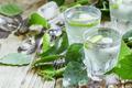 Birch icy vodka - PhotoDune Item for Sale
