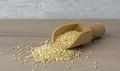 A Wooden Scoop of Quinoa Seeds - PhotoDune Item for Sale