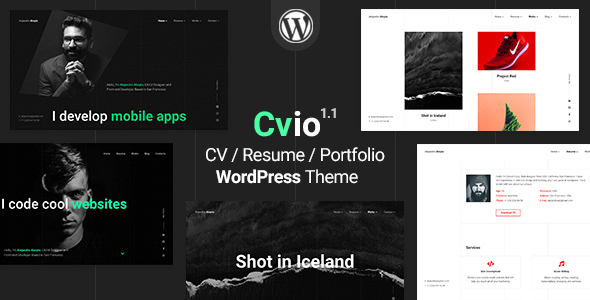 Cvio | CV/Resume Theme Preview