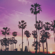 Tropical House Upbeat