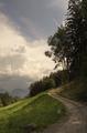Landscape near Barbian - PhotoDune Item for Sale