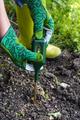 Nutrients soil meter. Measure soil for nitrogen content with digital device. - PhotoDune Item for Sale