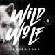 Wild Wolf - GraphicRiver Item for Sale