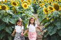 Little girls among of a sunflower among a field of sunflowers in the evening. Summer concept - PhotoDune Item for Sale
