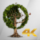 Earth Globe Tree (4K) - VideoHive Item for Sale