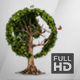Earth Globe Tree (Full HD) - VideoHive Item for Sale