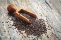 Chia seeds in scoop on stone - PhotoDune Item for Sale