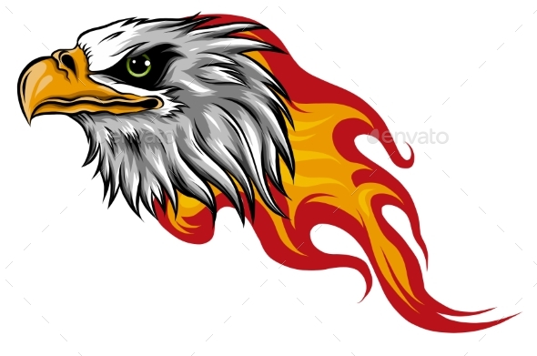Eagle Head with Flames Vector Illustration Design