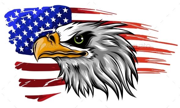 American Bald Eagle Illustration Vector Against