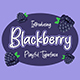 Blackberry - GraphicRiver Item for Sale