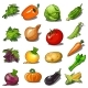 Set of Ripe Vegetables Isolated on White - GraphicRiver Item for Sale