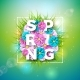 Vector Illustration on a Spring Nature - GraphicRiver Item for Sale