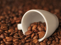 Coffee beans in coffee cup - PhotoDune Item for Sale