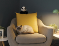 Cute lovely cat relaxing on the armchair - PhotoDune Item for Sale