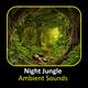 Night Jungle Ambient