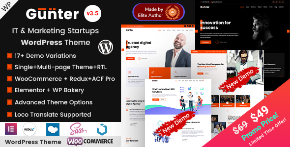 Gunter - IT & Marketing Startups WordPress Theme