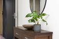 Indoor Plants - PhotoDune Item for Sale