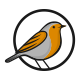 Robin Bird - American Bird Logo - GraphicRiver Item for Sale