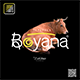 Boyana Fonts - GraphicRiver Item for Sale