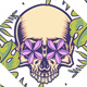 Set of Skull with Tropical Border - GraphicRiver Item for Sale