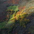 Autum Colors in the Mountain Slope - PhotoDune Item for Sale