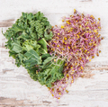 Fresh kale sprouts with leaves of vegetable in shape of heart - PhotoDune Item for Sale