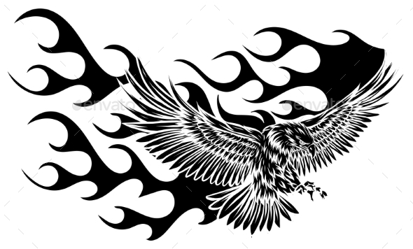 Flying Eagle, Spread Out Its Feather. Black Eagle