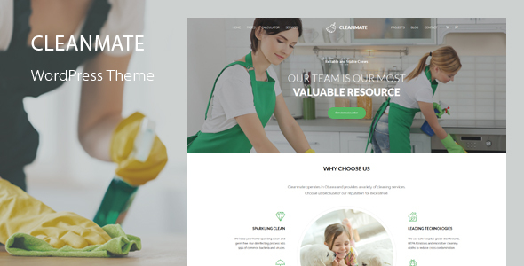 CleanMate - Cleaning Company Maid Gardening WordPress Theme