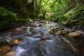 Stream rushes between quartzite pebbles - PhotoDune Item for Sale