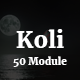 Koli - 50 Modules Responsive Email Template - ThemeForest Item for Sale
