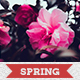 Spring Photoshop Actions - GraphicRiver Item for Sale