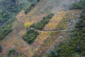 Colorful Autumnal Terraced Vineyards on the Slopes of Sil Canyon in Ribeira Sacra - PhotoDune Item for Sale