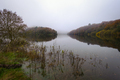 Foggy Morning next to a River with calm waters - PhotoDune Item for Sale
